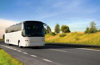 Выписать путевой лист на автобус сутки